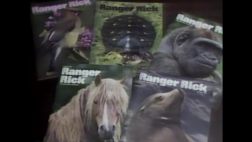 CIRCA 1980s - The founder of Ranger Rick magazine discusses the publication's aims, while editors and artists are seen working on an issue. | Shutterstock HD Video #1036754513