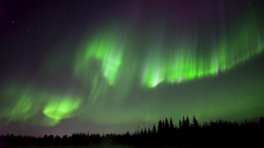 Realistic real time (not timelapse) colorful aurora borealis (northern lights) dancing over trees in Alaska