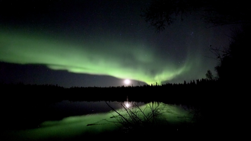 Realistic real time (not timelapse) aurora borealis (northern lights) dancing over trees and lake in Alaska while beavers swim by   Shutterstock HD Video #1036783799