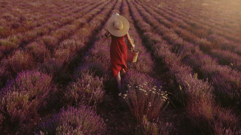 Outdoor full-length portrait of young happy smiling girl wearing orange linen dress, straw hat, holding wicker basket, posing, running in beautiful lavender field during sunset