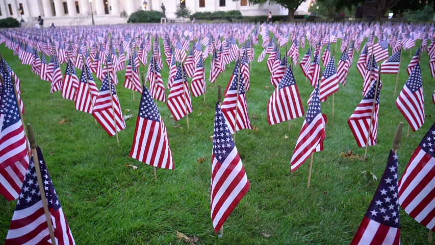 Field of American Flags waving in the wind