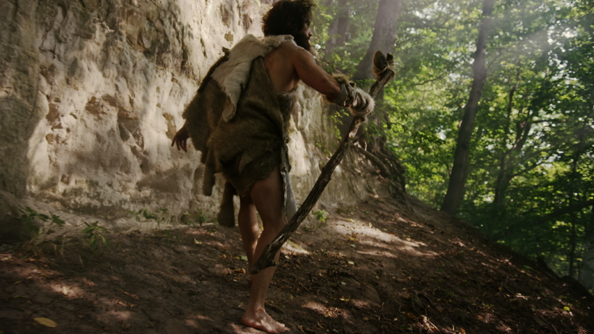 Primeval Caveman Wearing Animal Skin Holds Stone Tipped Hammer Looks Around, Exploring Prehistoric Forest, Ready to Hunt Animal Prey. Neanderthal Going Hunting into Jungle. Following Back View Shot | Shutterstock HD Video #1037017286