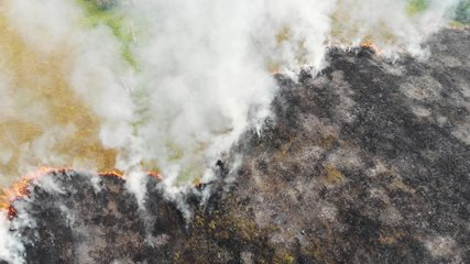 Epic aerial view of smoking wild fire. Large smoke clouds and fire spread. Forest and tropical jungle deforestation. Amazon and siberian wildfires. Dry grass burning in the field, ecology concept.