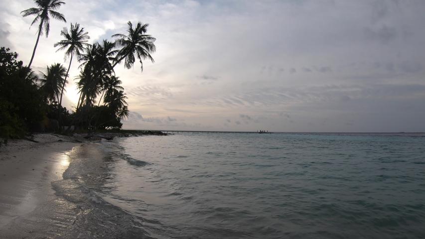 Beach at sunset at Maldives sea - Sun sets behind palm trees | Shutterstock HD Video #1037360384