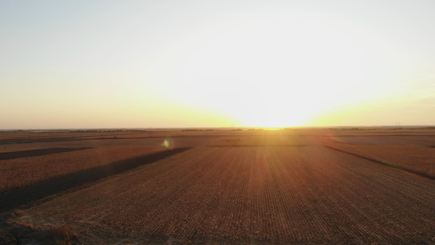 Agriculture Sunflower and Corn sunset field aerial drone view above | Shutterstock HD Video #1037396843