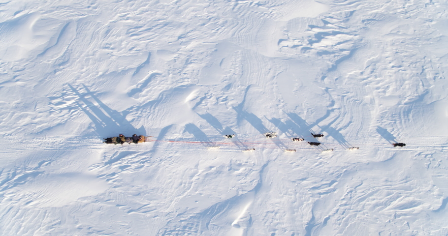 Aerial Birdseye view of sleigh dogs pulling a sledge across the frozen Arctic sea.