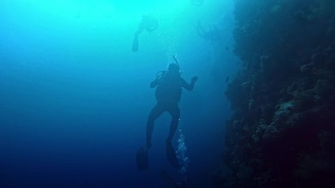 Wadi el Gemal / Egypt - 12 13 2018: Silhouette of a diver moving in deep blue.