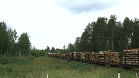 The train pulls cars with timber from the forest to the sawmill.