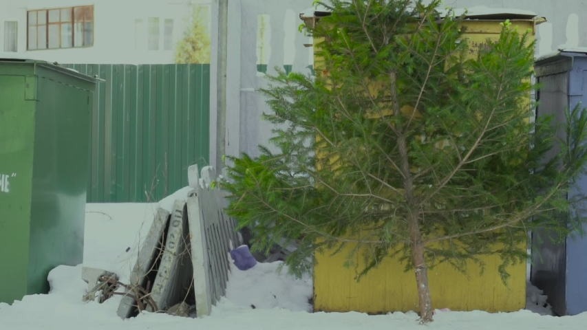 Christmas tree lies near a near public recycling bins after new year in the town. Concept end of celebration. Slow motion | Shutterstock HD Video #1038154379