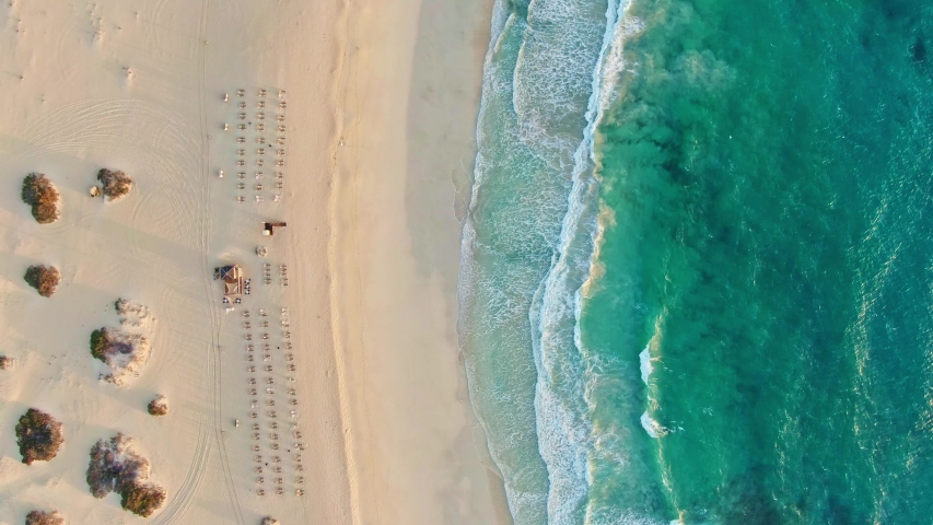 Aerial 4k panoramic bird's eye drone sunrise view of a beach section at Corralejo Natural Park (Parque Natural de Corralejo) on Fuerteventura, Canary Islands, Spain. Big waves & sunbeds for tourists. | Shutterstock HD Video #1038157604