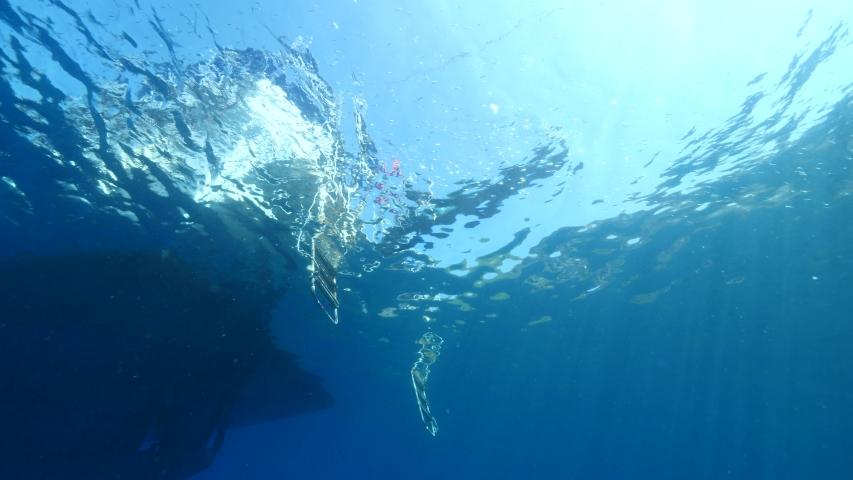 Boat underwater scuba diver jumps into water  | Shutterstock HD Video #1038161117