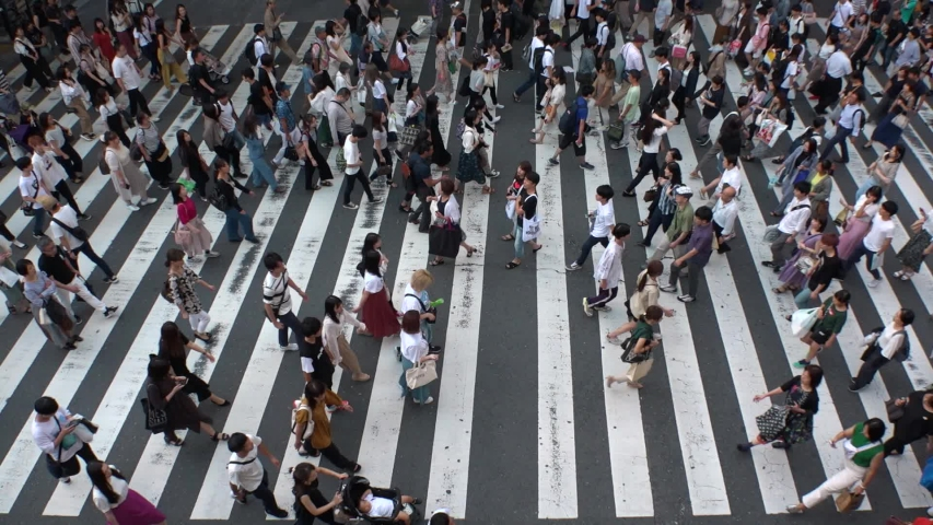 UMEDA, OSAKA, JAPAN - CIRCA SEPTEMBER 2019 : Aerial high angle view of zebra crossing near Osaka train station. Crowd of people at the street. Shot in busy rush hour. Wide slow motion. #1038431879