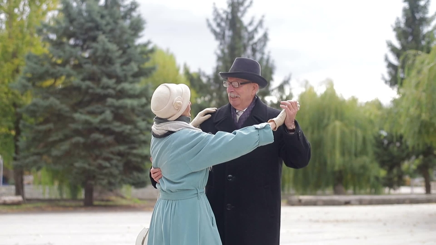 Happy mature older couple dancing laughing in the park, beautiful romantic middle-aged older grandparents relaxing having fun together in the park Royalty-Free Stock Footage #1038626762
