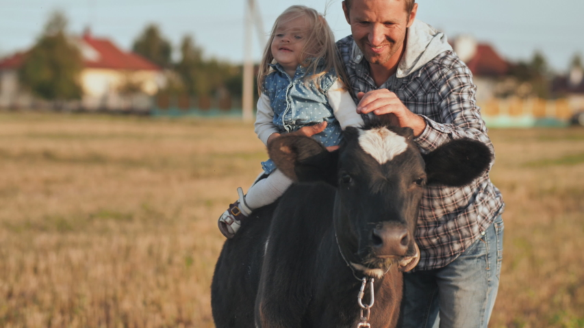 Father planted a one-year-old daughter on a cow and poses.