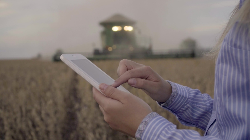Farmer using digital tablet computer in cultivated soybean field, use of drone, applying modern technology in agricultural activity, selective focus.