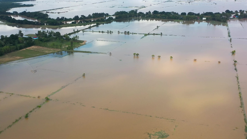 Aerial View of Rural Farm affected by Spring flooding featuring Farm house, silo on dry ground, livestock, green fields, brown flood water, covered roads