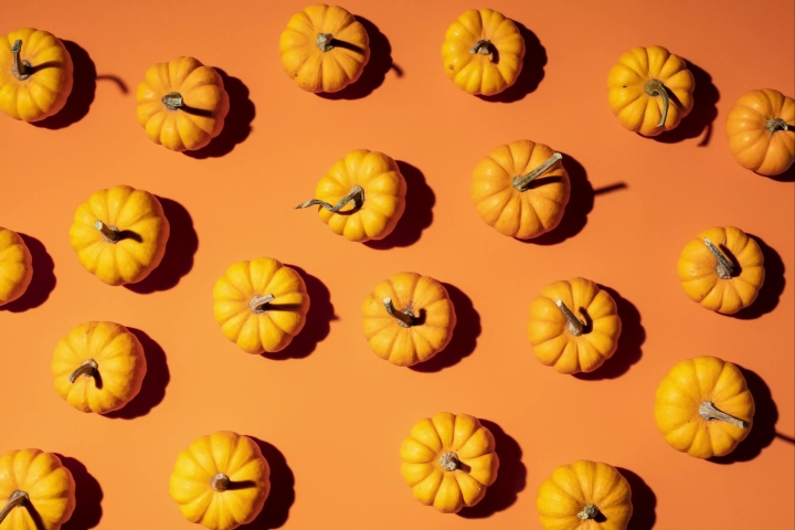 Fall Pumpkin Stop-Motion on an orange theme background - top view wiggling stopmotion animation for Thanksgiving | Shutterstock HD Video #1038809357