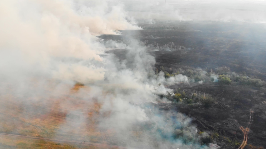 Air pollution caused by wildfires, clouds of smoke above the burning field, aerial footage. Epic natural disaster, forest fire in summer 2019.