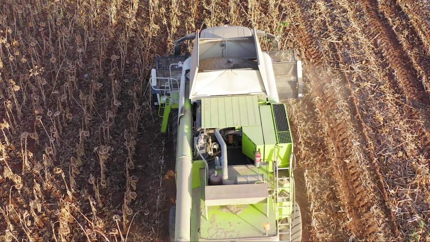 Large combine harvesting Sunflower Seeds, Aerial follow footage. #1038937436