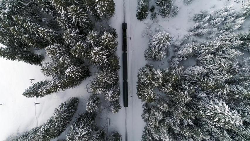 Top down aerial shot of railway train in snow covered forest trees
