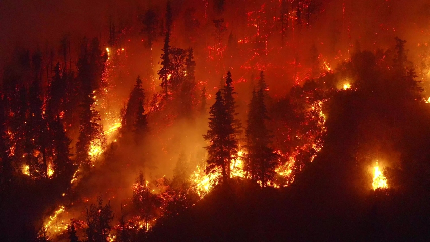 Aerial, tilt down, drone shot, overlooking trees in flames, Alaskan forest fires destroying and causing air pollution, on a dark, summer night, in Alaska, USA Royalty-Free Stock Footage #1038964586