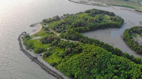 Top Aerial View Of Trees Near The Beach And Sand Field And Sea - Moving Down