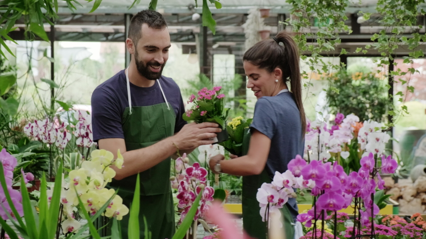 Expert young woman and man working as florist in flower shop. Sales assistant helping colleague with plants and flowers in greenhouse. Teamwork and collaboration with happy co-workers in Milan