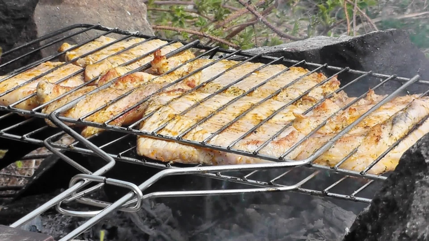 Cooking meat on open charcoal in nature while relaxing. Grilled meat | Shutterstock HD Video #1039240172