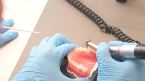 The hands of the dentistry teacher working the denture