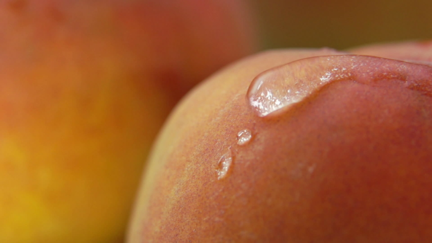 Drop of water flows down the surface of a ripe juicy peach | Shutterstock HD Video #1039369697