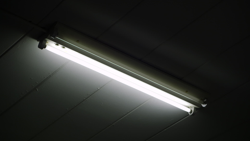 Fluorescent light flickering with power problems | Shutterstock HD Video #1039419365