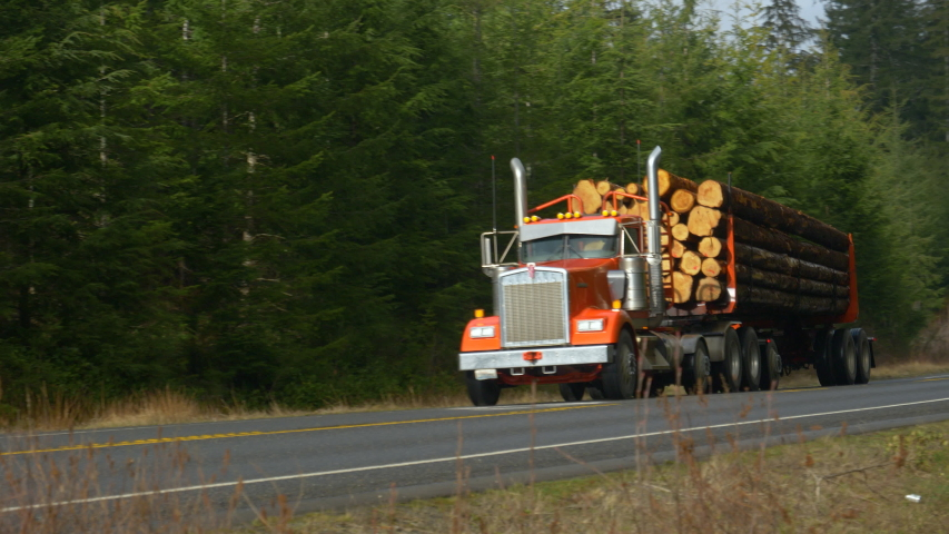 Red big rig transports heavy logs down an empty asphalt highway crossing the beautiful Olympic National Forest in Washington, USA. Large 18 wheel freight truck hauls heavy logs down the rural freeway.