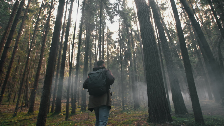 Young man walking through tall trees in misty autumn forest. Male traveler hike with backpack trekking pine woodland, walk in fog discover woods and enjoys nature. Slow motion follow wide angle shot | Shutterstock HD Video #1040091371
