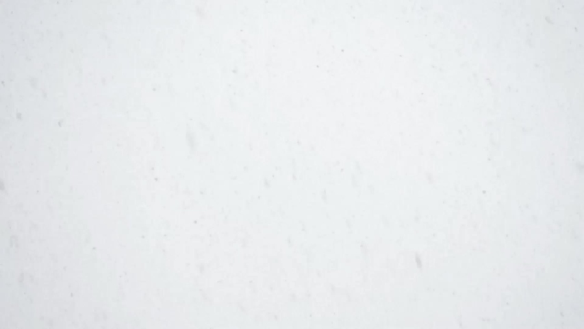 Snowfall against the sky. Not video effect, but real video shooting.   Shutterstock HD Video #1040250812