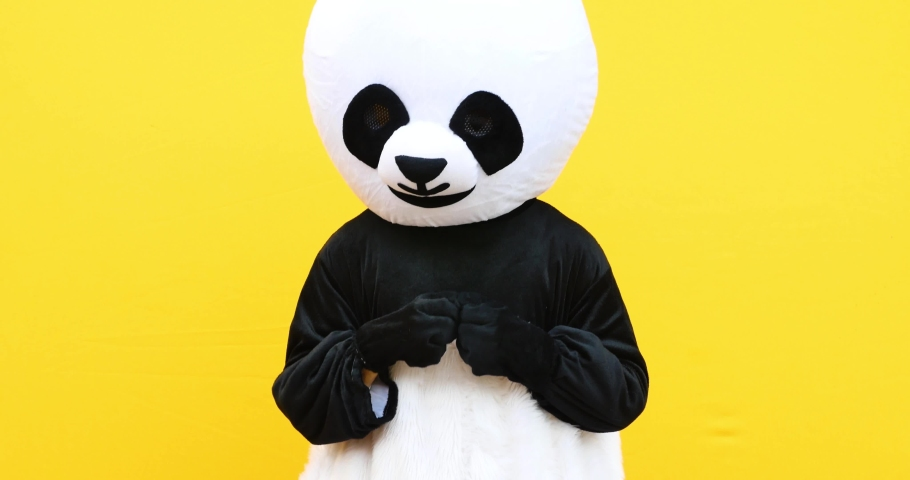 Person with panda costume dancing dab dance. Mascot character lifestyle concept on colored background   Shutterstock HD Video #1040291189