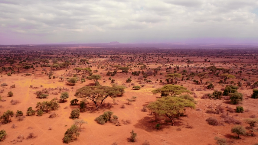 An aerial view over savana safari landscape, Kenya, Africa Royalty-Free Stock Footage #1040560085
