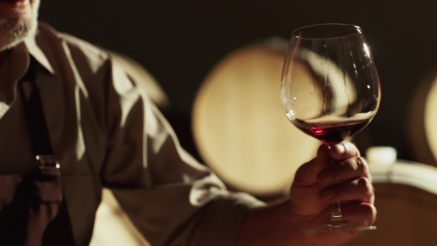 Portrait of a senior well-dressed winemaker checking the wine . Positive sommelier mixing red wine in glass evaluating color at tasting . Winemaking concept . Shot on ARRI ALEXA Camera Slow Motion . | Shutterstock HD Video #1040773820