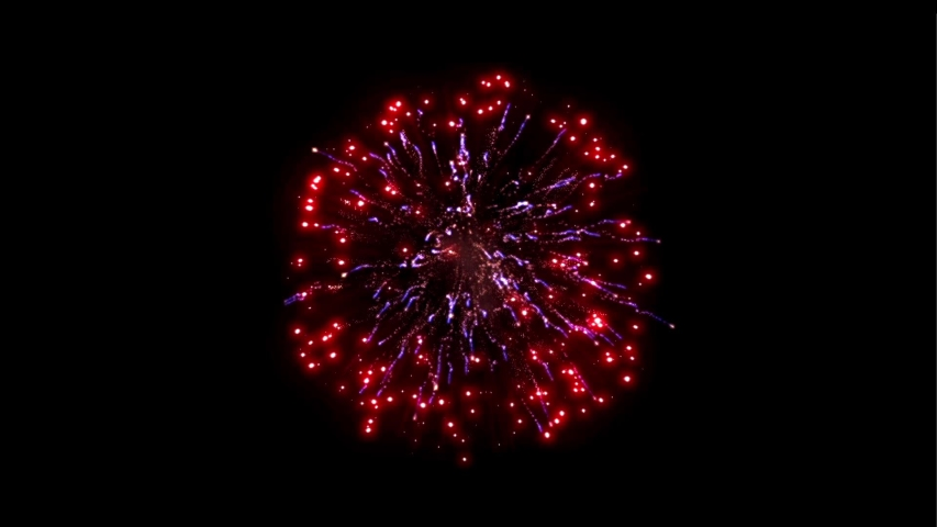 Colorful firework animation in black backgrounds  | Shutterstock HD Video #1040823338
