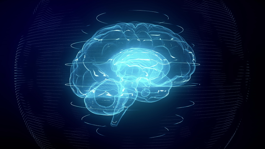 Futuristic blue digital brain seamless loop. Neurons firing in MRI scan of artificial intelligence neural network. Medical research of brain activity. Deep learning, AI and modern technology 3D render | Shutterstock HD Video #1040834858