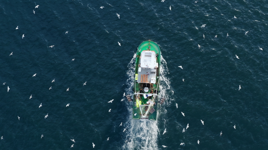 Aerial view fishing boat flying drone with large catch fish swirling hungry gulls flock of glaruses. Small ship floats on a sea surface leaving a path of sea foam water. Top view. Copy space | Shutterstock HD Video #1040896217