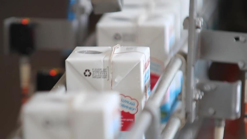 Kiev Region, Ukraine - Februry 2017: Milk packaging line. Dairy products in packaging are moving along conveyor at dairy factory. Baby food packaging. Conveyor belt with packs of milk. Food packaging.