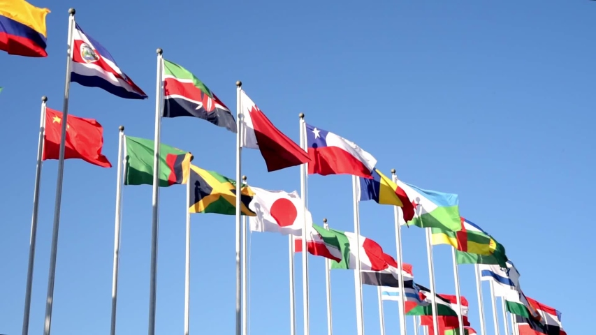 Flags of many states are fluttering on flagpoles. Royalty-Free Stock Footage #1041015260