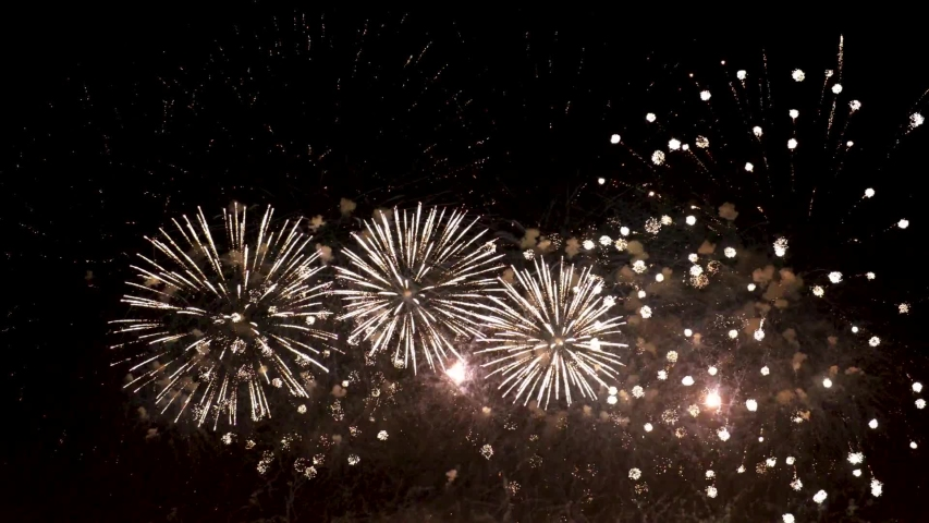Colorful fireworks exploding in the night sky celebrations and events in bright colors | Shutterstock HD Video #1041065363