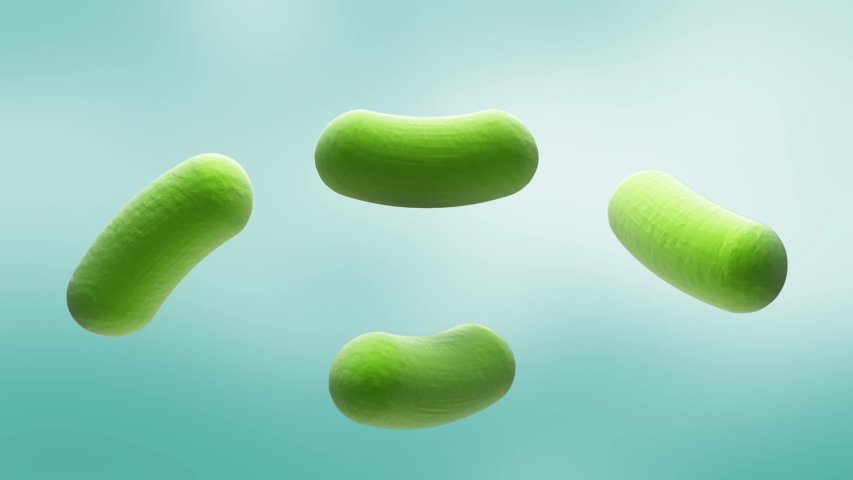Probiotic-many bifidobacteria and mask to them.  3d animation