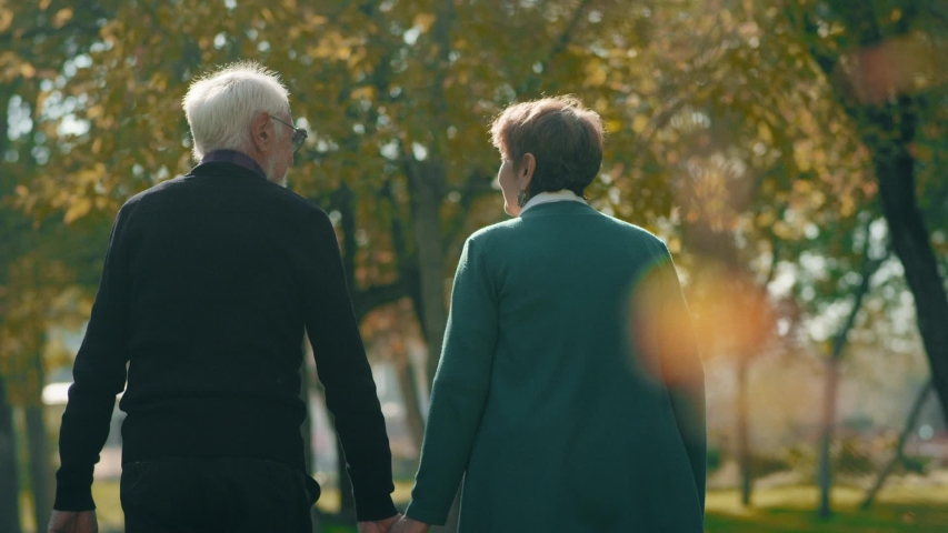 Back view of elderly couple holding hands while walking together in park . Rear view of romantic senior couple resting , relaxing in nature . Happiness people lifestyle . Slow motion footage . | Shutterstock HD Video #1041292828