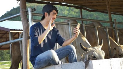 Young Asian Farmer video calling in farm, Waving and chat with family on smartphone camera