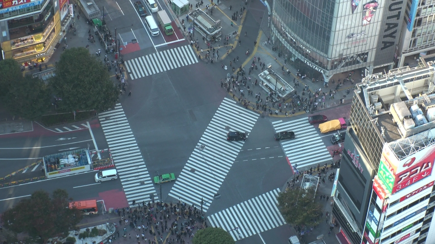 SHIBUYA, TOKYO, JAPAN - CIRCA NOVEMBER 2019 : Aerial high angle top view around SHIBUYA scramble crossing in day time. Crowd of people at the busy street. Japanese business and lifestyle concept. | Shutterstock HD Video #1041463732