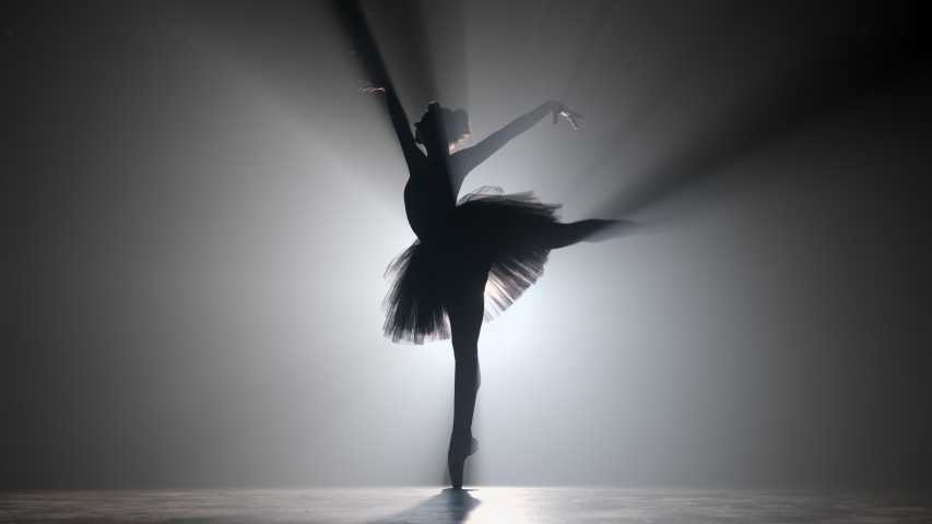 Professional ballerina dancing ballet in spotlights smoke on big stage. Beautiful young girl wearing black tutu dress on floodlights background. Black and white. 4k | Shutterstock HD Video #1041699409