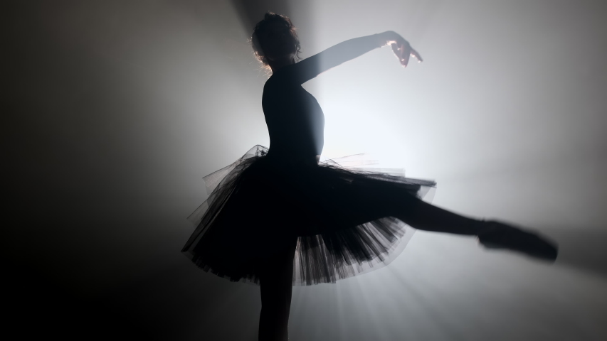 Young ballerina on smoke stage dancing modern ballet. Performs smooth movements | Shutterstock HD Video #1041734857