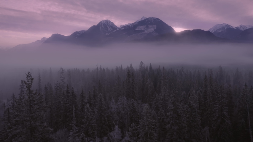 Aerial: flying above a pine forest covered in fog on a chilly morning. The sun rising through is Rocky Mountains. Blue River, British Columbia, Canada